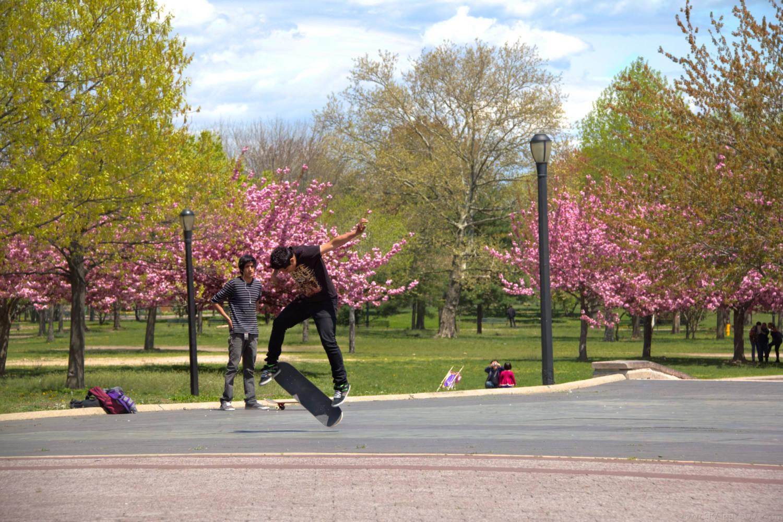 World fair skater