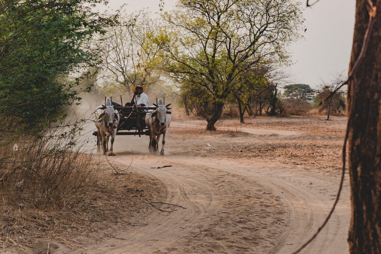 Bagan-59